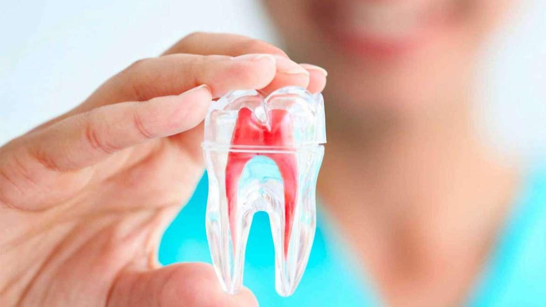 Endodoncia Nivel I A - Jueves 2020